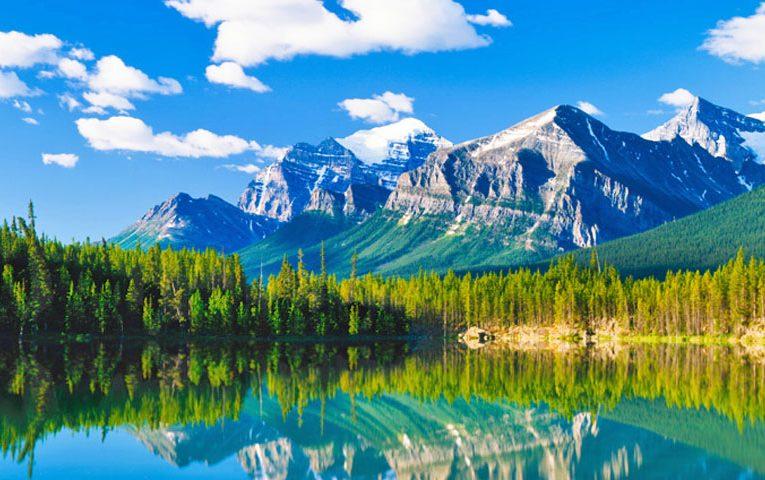 [新聞] 加拿大人的7大禁忌4大習慣