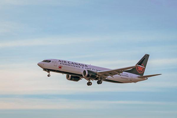 [新聞] 加航被評為「2019年最佳航空公司」